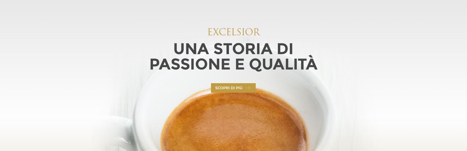 Banner_Excelsior